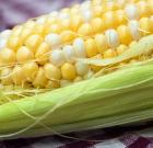Priberá sa z kukurice? Áno aj nie