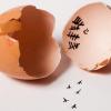 Vieme, prečo by ste mali jesť vajíčka