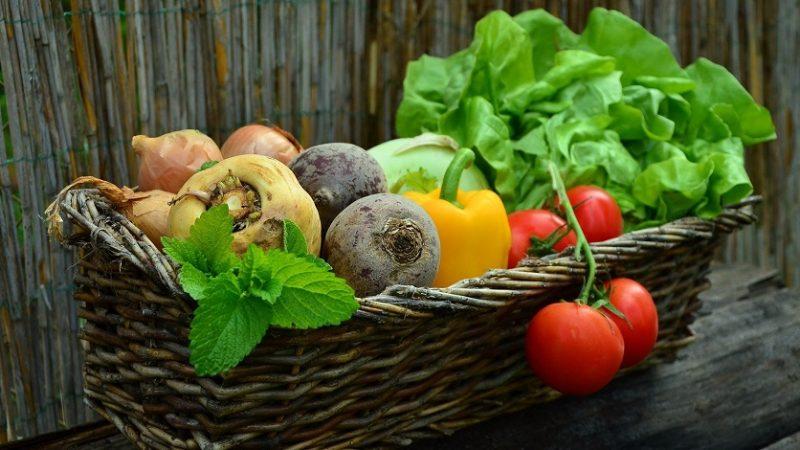 Prečo sa oplatí investovať do BIO zeleniny? Výhody oproti klasickej zelenine